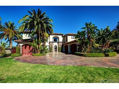 919 Talcey Terrace Riverside, CA MLS# OC14148167