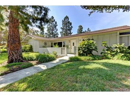 98 Via Estrada Laguna Woods, CA MLS# OC14218954