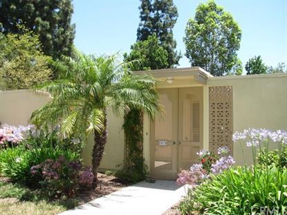 207 Avenida Majorca Laguna Woods, CA MLS# OC15137839
