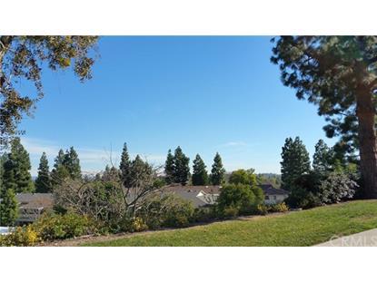 23 AVENIDA CASTILLA  Laguna Woods, CA MLS# OC16013871