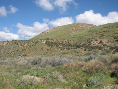 1001 Vac/Soledad Pass Drt Drive Acton, CA MLS# SR16003483