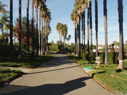 237 Rocky Crest Road Fallbrook, CA MLS# SW13100453