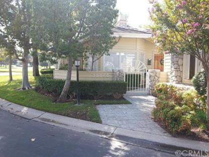 38060 Stone Meadow Drive Murrieta, CA MLS# SW14185603