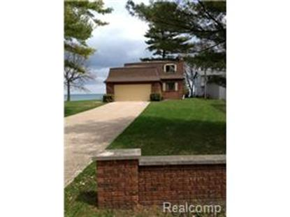 8597 LAKEVIEW DRV  Lexington, MI MLS# 214039835
