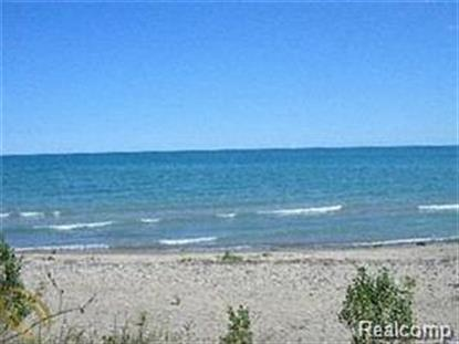 8849 LAKESHORE RD  Lexington, MI MLS# 214099211