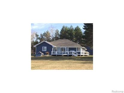 3233 BABCOCK RD  Lexington, MI MLS# 215034854