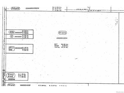 VACANT RAWSONVILLE RD  Sumpter Twp, MI MLS# 216033122