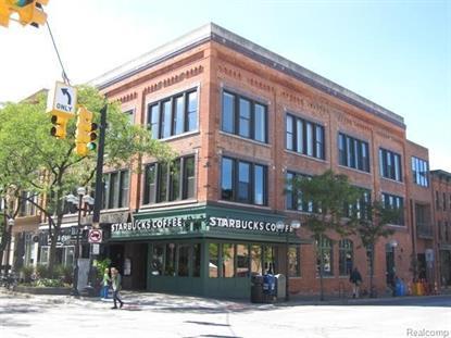101 W Liberty St Ann Arbor, MI 48104 MLS# 543225024