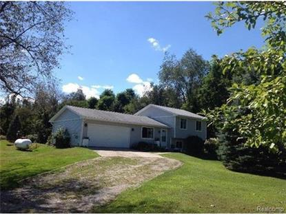 21681 Willow Bridgewater, MI MLS# 543225128