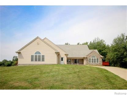 48159 Timber Park Ct Sumpter Twp, MI MLS# 543234131