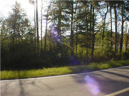 0 HWY 49  Mendenhall, MS MLS# 247021