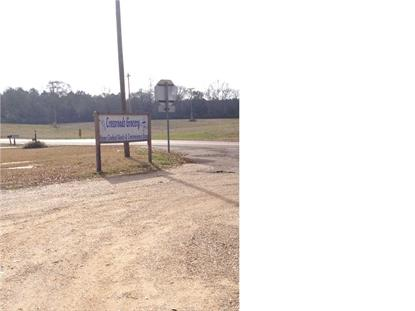 2889 North HWY 541 HWY  Mendenhall, MS MLS# 259834