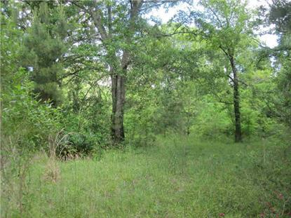 0 MUDLINE RD  Lake, MS MLS# 269298