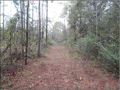00 DRY RIDGE RD Mendenhall, MS MLS# 281024