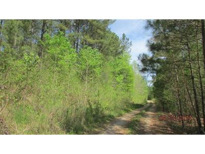 000 Colon Rd  Sanford, NC MLS# 159405