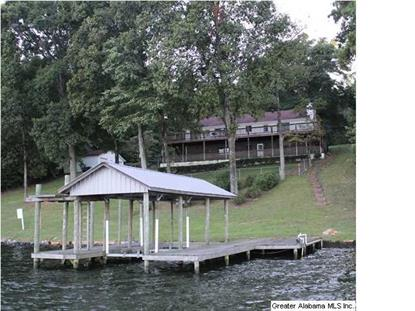 890 BLACK ACRES RD  Cropwell, AL MLS# 596987