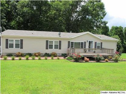 8101 CO RD 25  Heflin, AL MLS# 603766