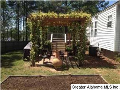 135 PINE SPRINGS RD  Margaret, AL MLS# 604224