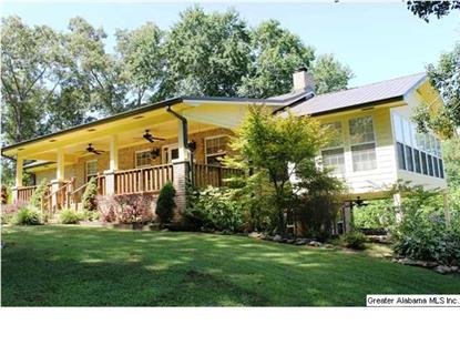 12170 CO RD 19  Heflin, AL MLS# 605032
