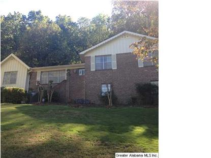 1591 MOUNTAIN GAP DR  Homewood, AL MLS# 605214