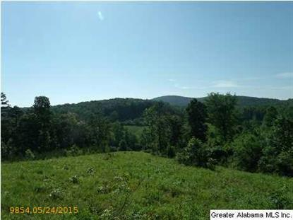 54.6 CO RD 431 Heflin, AL MLS# 633252