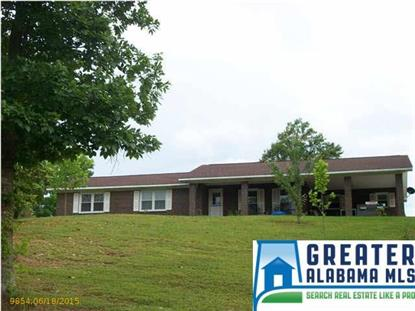 608 PERRYMAN BRIDGE RD Heflin, AL MLS# 633436