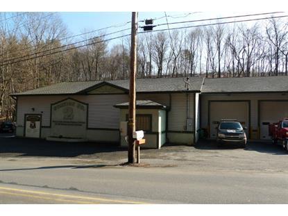 226 Mill Creek Av  Pottsville, PA MLS# 49842