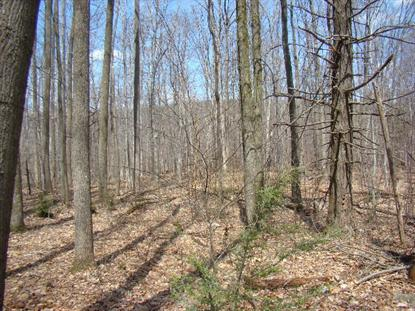 2 Swopes Valley Rd  Pine Grove, PA MLS# 53249