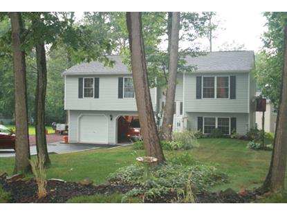 1806 Crazy Horse Dr  South Manheim, PA MLS# 54118
