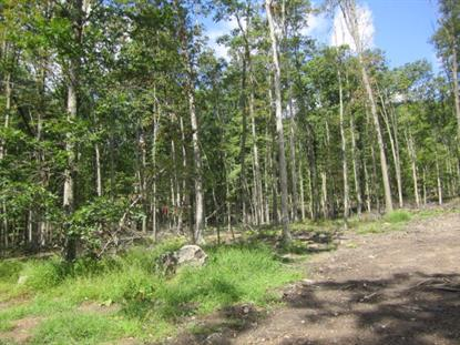 0 Owl Creek  Tamaqua, PA MLS# 54564