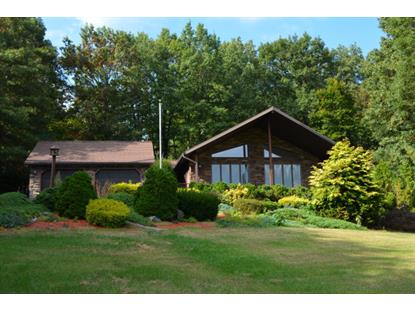 14 Aungst Lane  Pine Grove, PA MLS# 54752