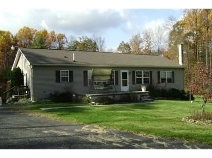 98 STONEY LANE  South Manheim, PA MLS# 54851