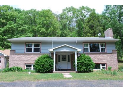 16 Village Rd  Pine Grove, PA MLS# 55789