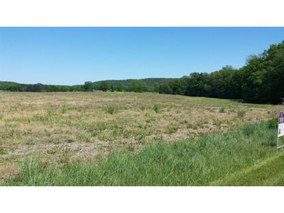 0 S Oak Grove  Pine Grove, PA MLS# 56349