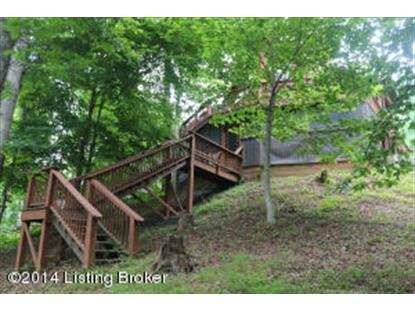 490 Moutardier Shores Dr Leitchfield, KY MLS# 1382477