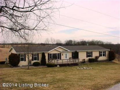 166 Bluegrass Ct, Bedford, KY