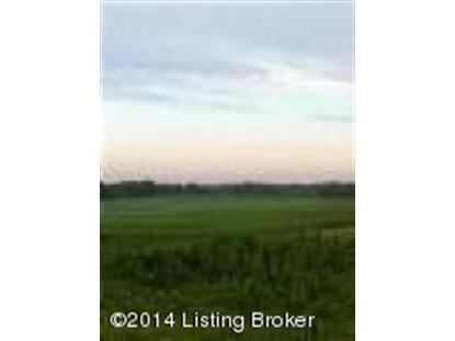 400 Armes Lively Rd Leitchfield, KY MLS# 1388489