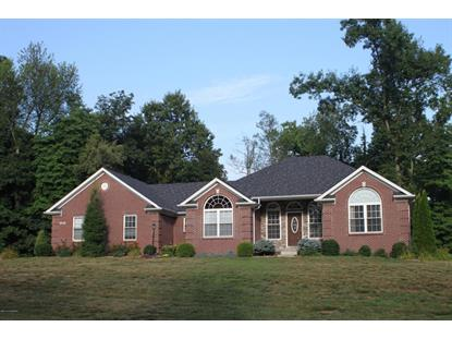 211 Majestic Way Cecilia, KY MLS# 1395683