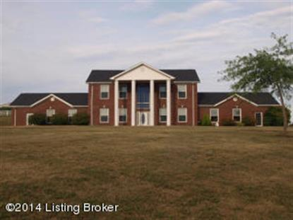 3800 Salt River Rd Leitchfield, KY MLS# 1397021