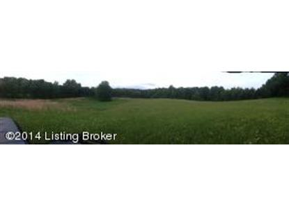 1054 Howevalley Road  Cecilia, KY MLS# 1397055