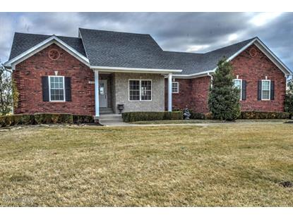 210 Nevin Ln Fisherville, KY MLS# 1410596