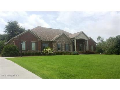 32 red sunset Blvd Cecilia, KY MLS# 1417108