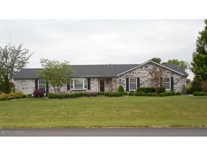 84 VALLEYVIEW Dr Fisherville, KY MLS# 1424857