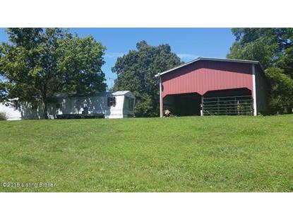 946 Coy Drane Rd Leitchfield, KY MLS# 1425845