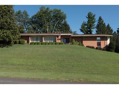 Real Estate for Sale, ListingId: 34779562, Louisville,KY40207