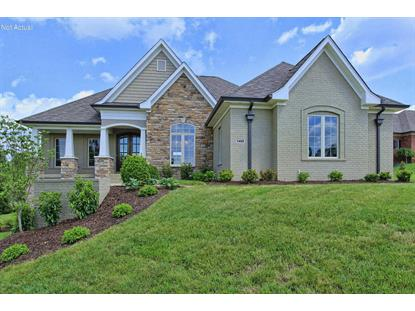 232 Shakes Creek Dr Fisherville, KY MLS# 1432975