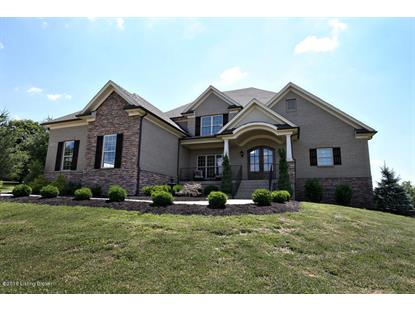 17004 Persimmon Wood Trail Fisherville, KY MLS# 1451150
