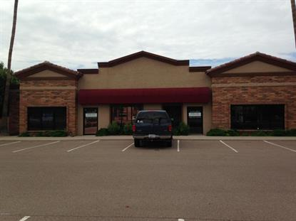 1044 Gilbert Road Gilbert, AZ 85234 MLS# 5134756