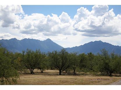 3800 CAMINO DE LA CANOA -- Green Valley, AZ MLS# 5191005