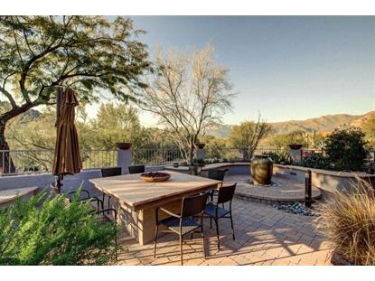 10080 DINOSAUR RIDGE Road Gold Canyon, AZ MLS# 5233139